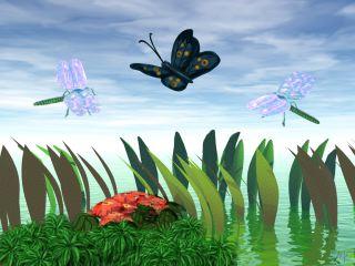 Dragonflydance
