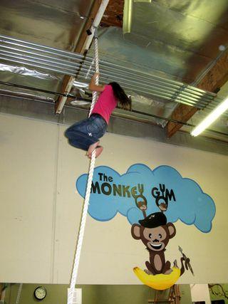 Monkey Gym_0004